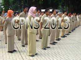 Info Tes Seleksi CPNS Honorer K2