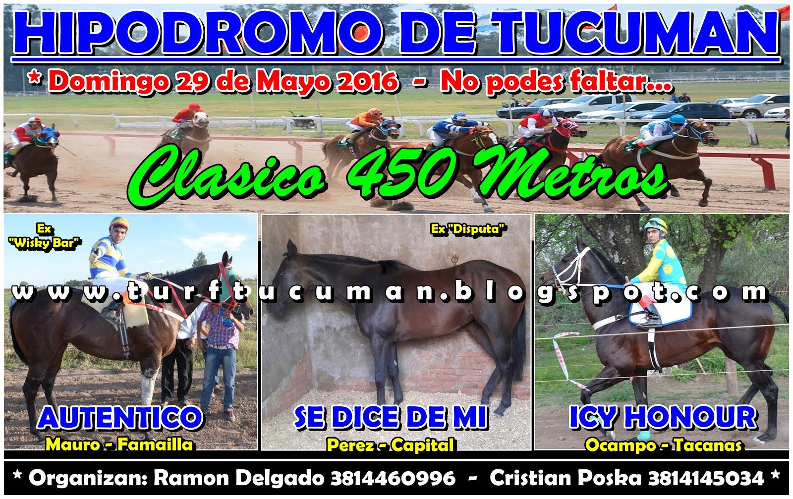 CLASICO 450