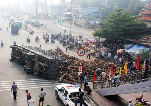 Hơn chục tấn gỗ tràn trước cổng Khu du lịch Suối Tiên