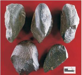 Kapak Perimbas (Sumber: Encarta Encyclopedia)