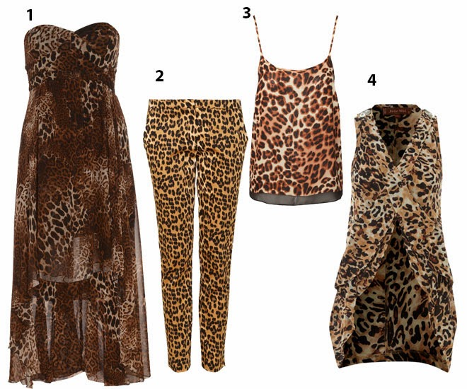 Leopard-Print-has-Landed