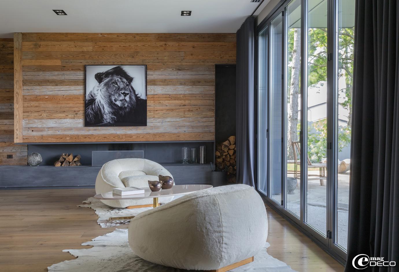 Dans la maison de Cécile Siméone, le mur du salon est couvert de madriers de chantier, photographie de Laurent Baheux intitulée 'Lion in the Wind', acheté chez 'Yellow-Korner'