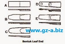 Bentuk Leaf End