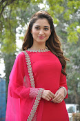 Tamanna latest glam pics at Bengal Tiger event-thumbnail-15