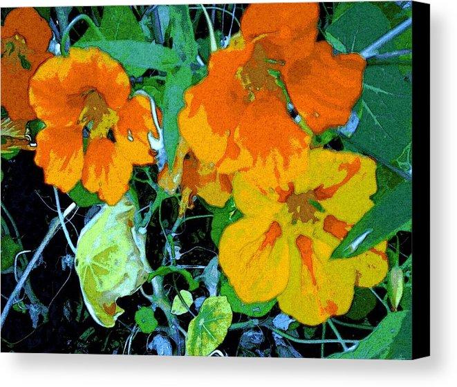 Garden Flavor Canvas Print
