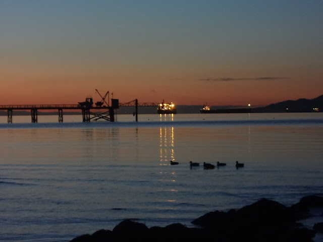 tankers and ducks in english bay vancouver