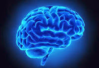 This is a list of the best free memory tests for Alzheimer's and dementia