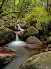 Visite El río de Parménides