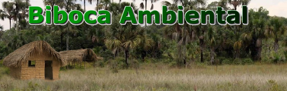 BIBOCA AMBIENTAL