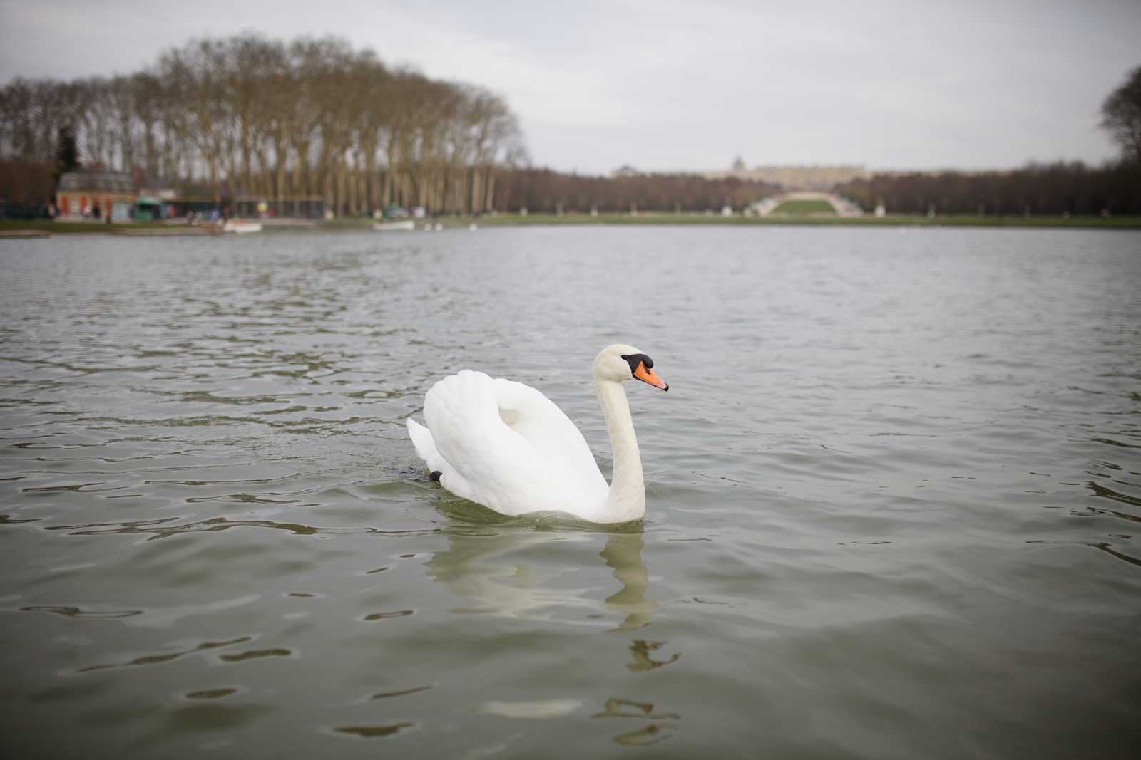 Paris Off the Beaten Path: Quiet Spots in the City