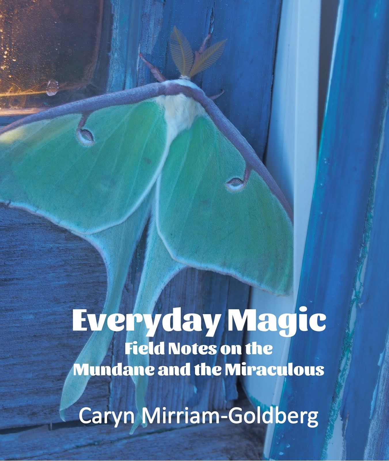 Everyday Magic