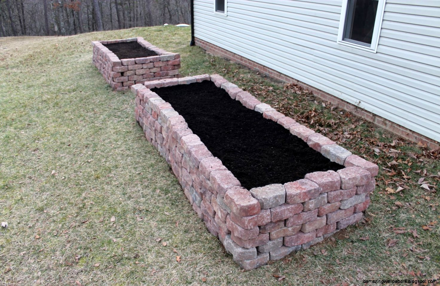 Paint Speckled Pawprints Raised Flagstone Vegetable Garden Beds