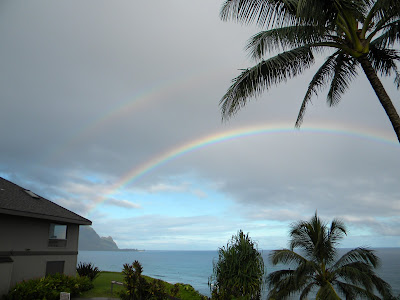 copyright 2016 All Hawaii News all rights reserved