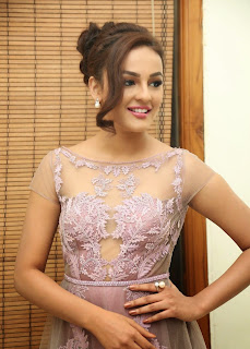 Actress Seerat Kapoor Pictures in Long Dress at Tiger Audio Launch  104
