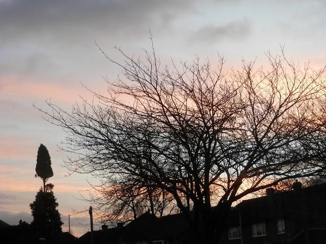 Photo an hour.  secondhandsusie.blogspot.co.uk