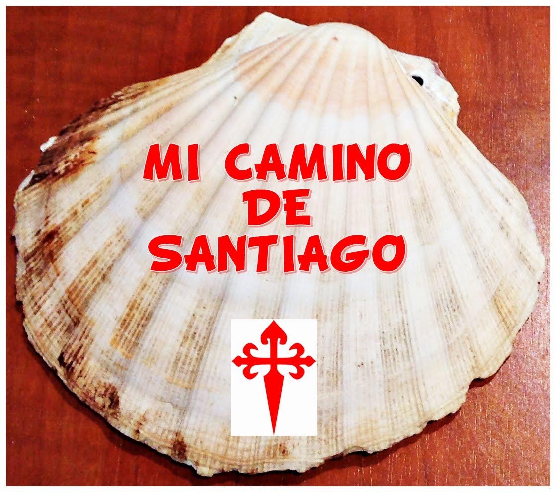 """""""MI CAMINO DE SANTIAGO"""""""
