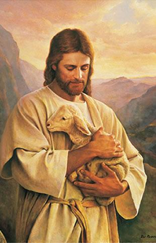 Mormons+and+Gays+new+website ... Shokh scandal, scandal video download free sex video Shokh Shokh etc, ...