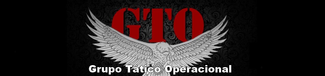 Grupo Tático Operacional