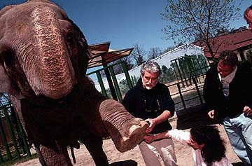 zoos should not exist essay This is a one thousand word essay for kids on the subject animals should not be kept in zoos there are many ways to write this essay so the thoughts here are personal.