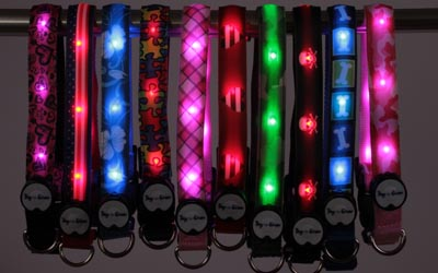image1 Dog E Glow Light Up Leashes Review   Holiday Gift Guide