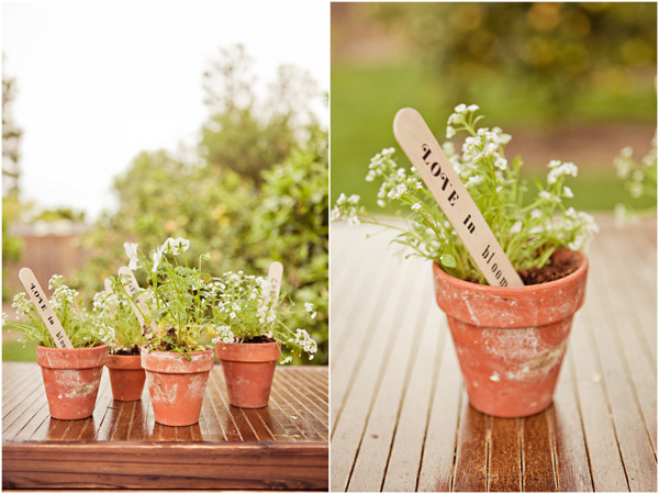 the potted plants were accented with the cutest wooden stakes that ...
