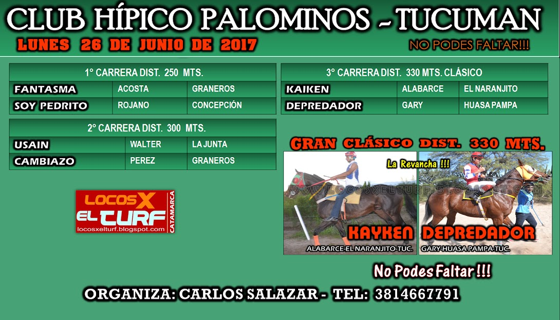 26-06-HIP. PALOMINOS-PROG.