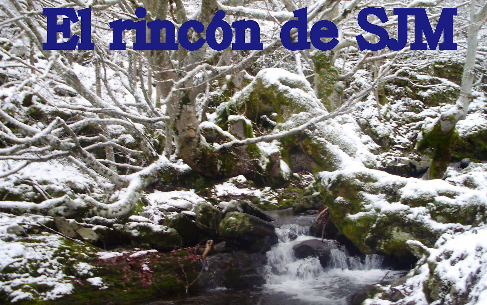 El  Rincon de SJM