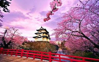 Jepang, contoh negara maju di asia