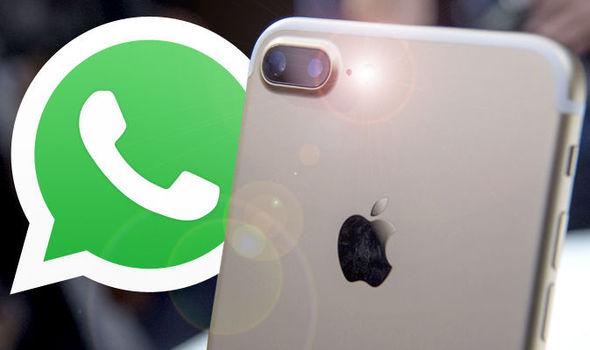 Whatsapp Akhirnya Resmikan Fitur Kirim Gambar Gif Untuk Ios Wajib Baca