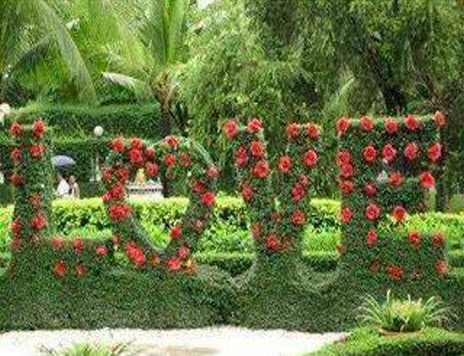 love word made from flower