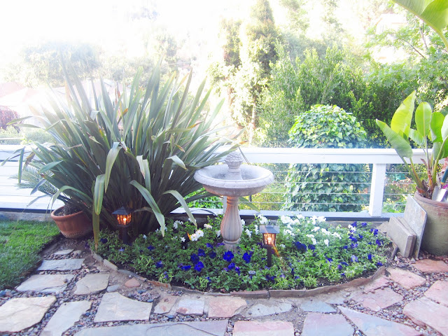Bird bath surrounded by small plants and stone path