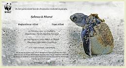 WWF'ye nacizane desteğimiz
