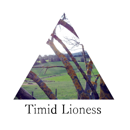 Timid Lioness