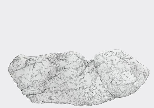 suiseki, piedra, contemplacion, objet trouvé, found art o ready-made, dibujo