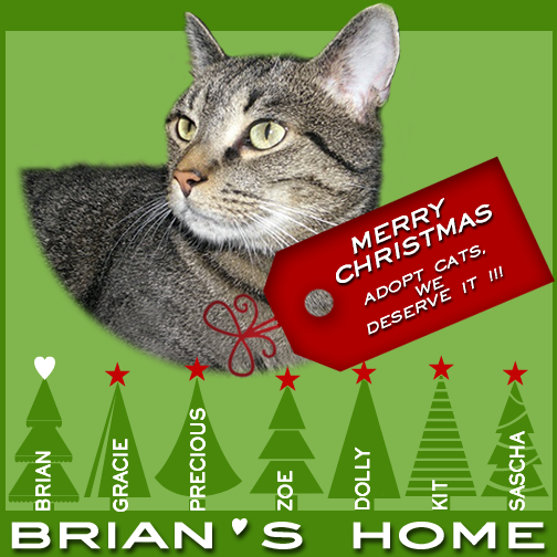 Merry Christmas Brian and family!