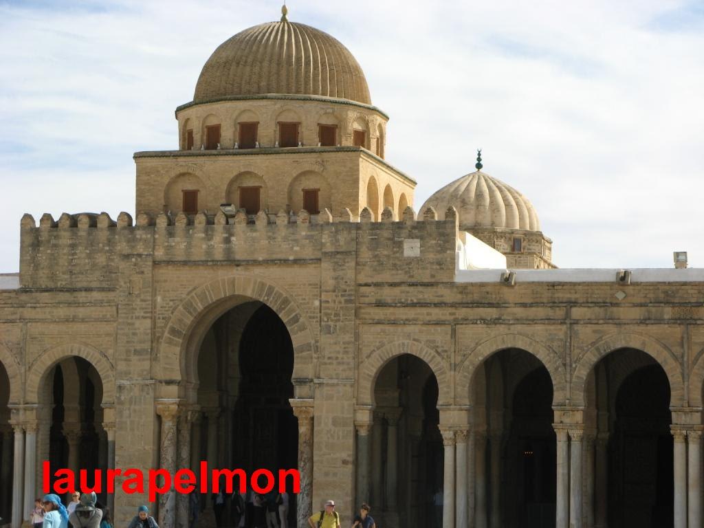 mesquitatozeur