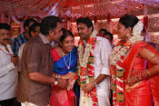 Amala Paul Al Vijay wedding Photos-thumbnail-24