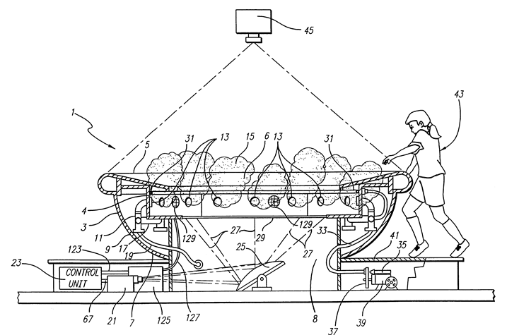U.S. Patent #6168531 - Soup bowl attraction Figure 1