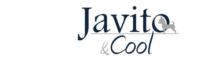 Javito&Cool Moda masculina