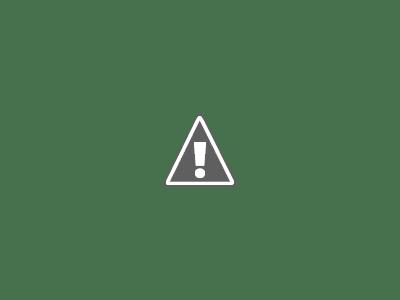 El derretimiento de los hielos de la Antártida es imparable