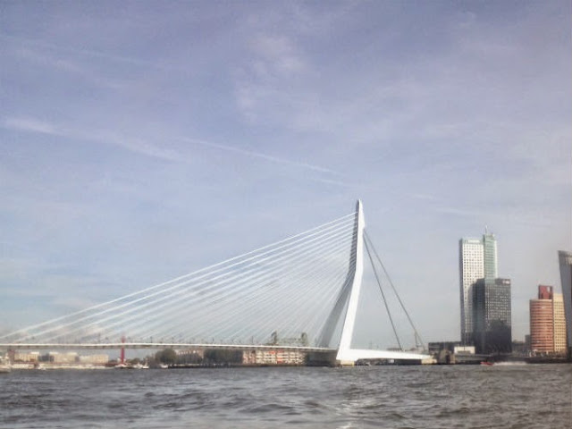 A Walk Through Rotterdam