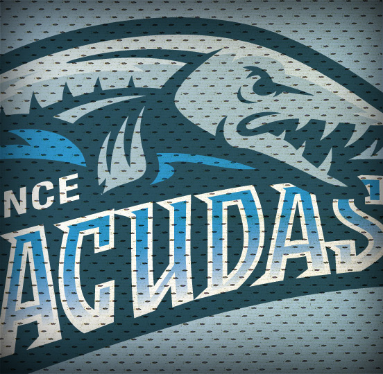 Barracudas Sports Logo Design