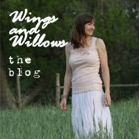 Wings & Willows