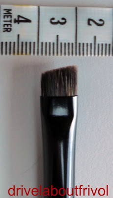 Chikuhodo Z-6 brush