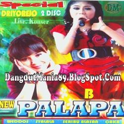 New Pallapa Live Mulung Driyorejo 2013