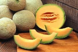 budidaya melon, manfaat melon bagi kesehatan, kandungan buah melon, melon korea