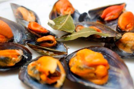 La cocina de maricarmen productos de temporada febrero - Cocinas maricarmen ...
