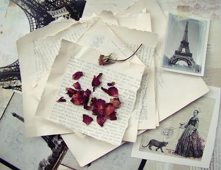 Travel To Paris...