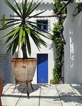 casa exotica en ibiza