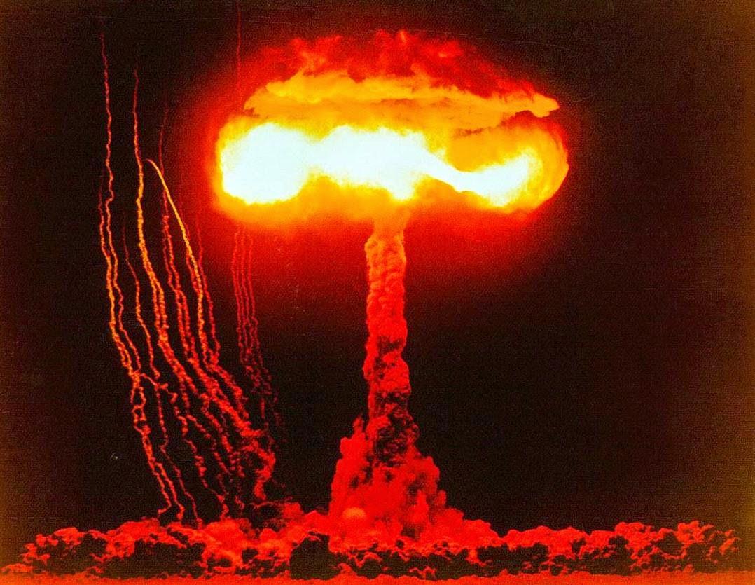 Jamur Kuning Bom Atom